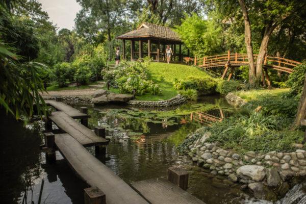 Things to do in Belgrade Botanical Garden