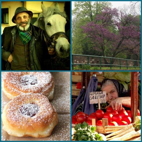 Living in Belgrade (2)
