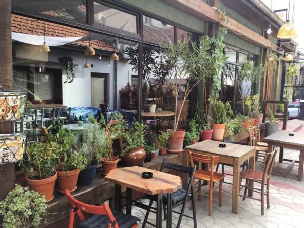 11 amazing bars in Vracar Telma