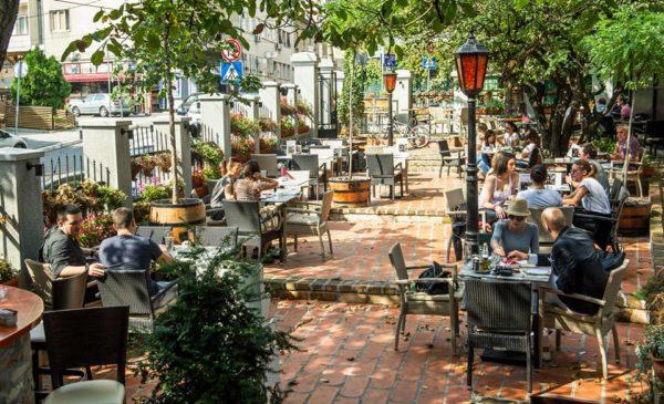 11 amazing bars in Vracar le petit bistro