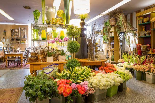 Flower shops Belgrade   Belgrade at night